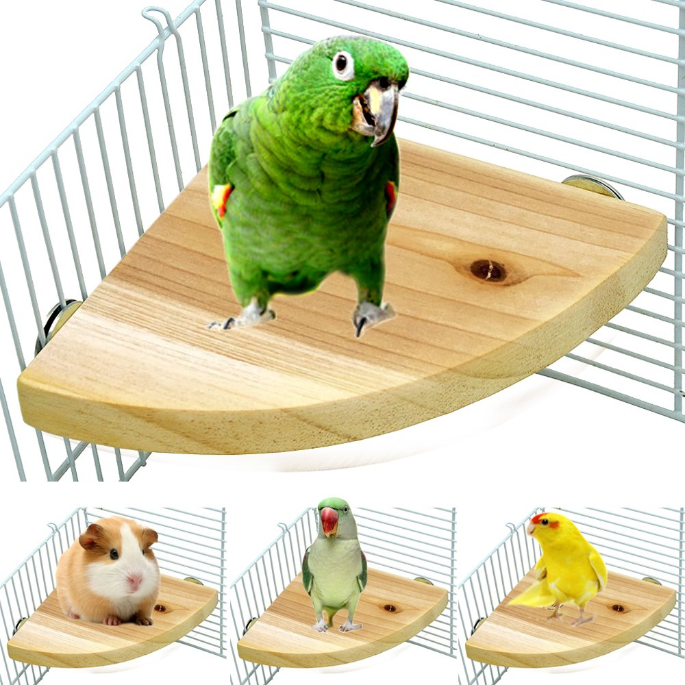 Borangs Wood Perch Bird Platform Parrot Stand Playground Cage Accessories for Small Anminals Rat Hamster Gerbil Rat Mouse Lovebird Finches Conure Budgie Exercise Toy 7 inch