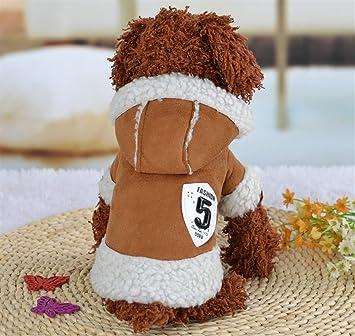 ShireyStore Ropa Creativa de Gatos Ropa para Mascotas No. 5 Ropa de Moda para Gatos y Perros de Moda Marrón Tamaño 14: Amazon.es: Productos para mascotas