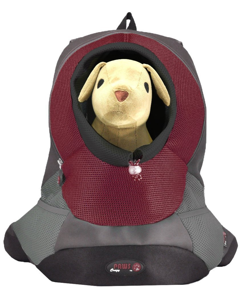 Crazy Paws Pet Backpack, Small, Burgundy