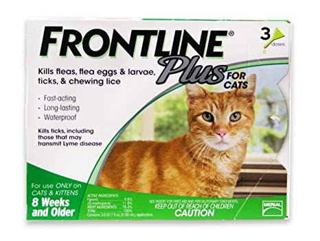Amazon Merial Frontline Plus For Cats Kittens Pet Supplies