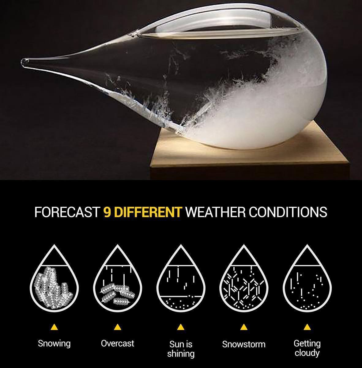 meisou Storm Glass Ornament Set Drop Display Weather Predicting Forecast Bottle Perfect Stylish Desktop Barometer Thermometer Forecasting