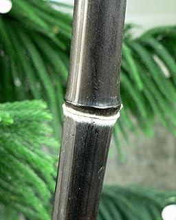 Amazon.com: Bambusa oldhamii gigante Madera Bambú – Grande 1 ...