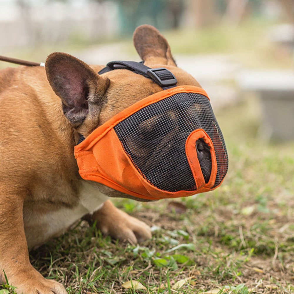 Dog Muzzles for Short Snout Dog, Breathable Mesh Dog Muzzle for Bulldog and Short-snouted Breeds to Anti-biting, Barking and Licking (S, Orange)