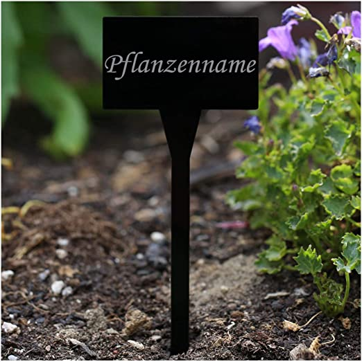 Acrílico cristal – Etiquetas para plantas (rectangular negro ...