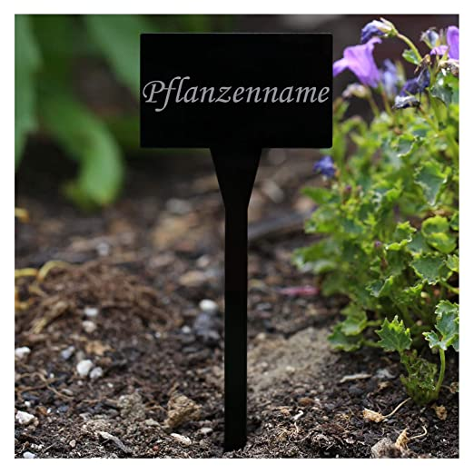 Acrílico cristal - Etiquetas para plantas (rectangular negro ...