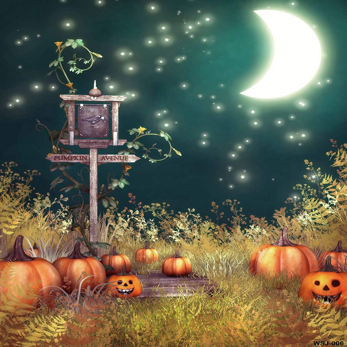 ハロウィン 写真 背景幕 パンプキン 怖い 月 写真 ブース ポーズ 背景 コットン 10x10ft halloween_3 B07GNC6VL6