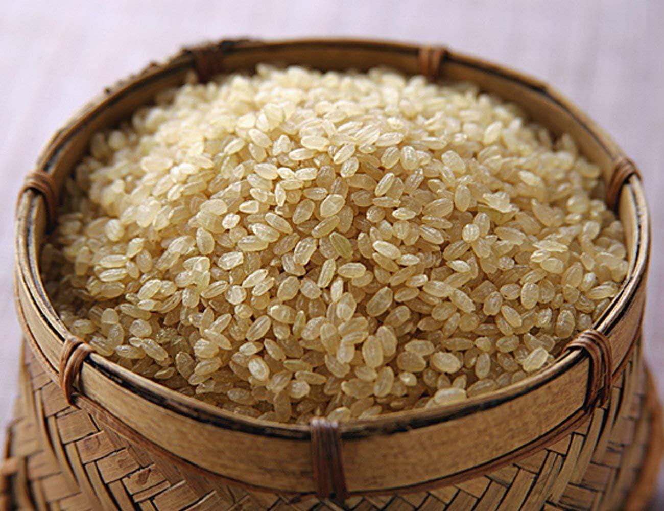 玄米 5kg こしひかり 六方銀米 特別栽培米 コウノトリ舞い降りるお米 兵庫県産