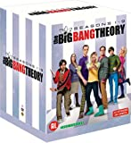Big Bang Theory L'integrale Saisons 1-9 /v Dvd