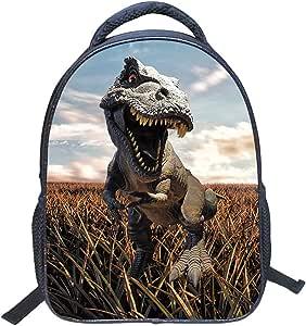 Jubang Mochila para Niños Mochila Escolar con Patrones de Dinosaurio Mochila Infantil para Escuela Primaria Mochilas Casual para Picnic Viaje Camping #5 tallla única