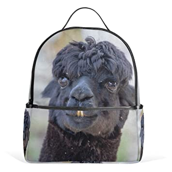 09fbb59d32c Amazon.com | OREZI Fashion Backpack Portrait Of Cute Black Llama Shoulder  Bags Casual School Bag Rucksack Daypack for School and Travel Camping Daily  Uses ...