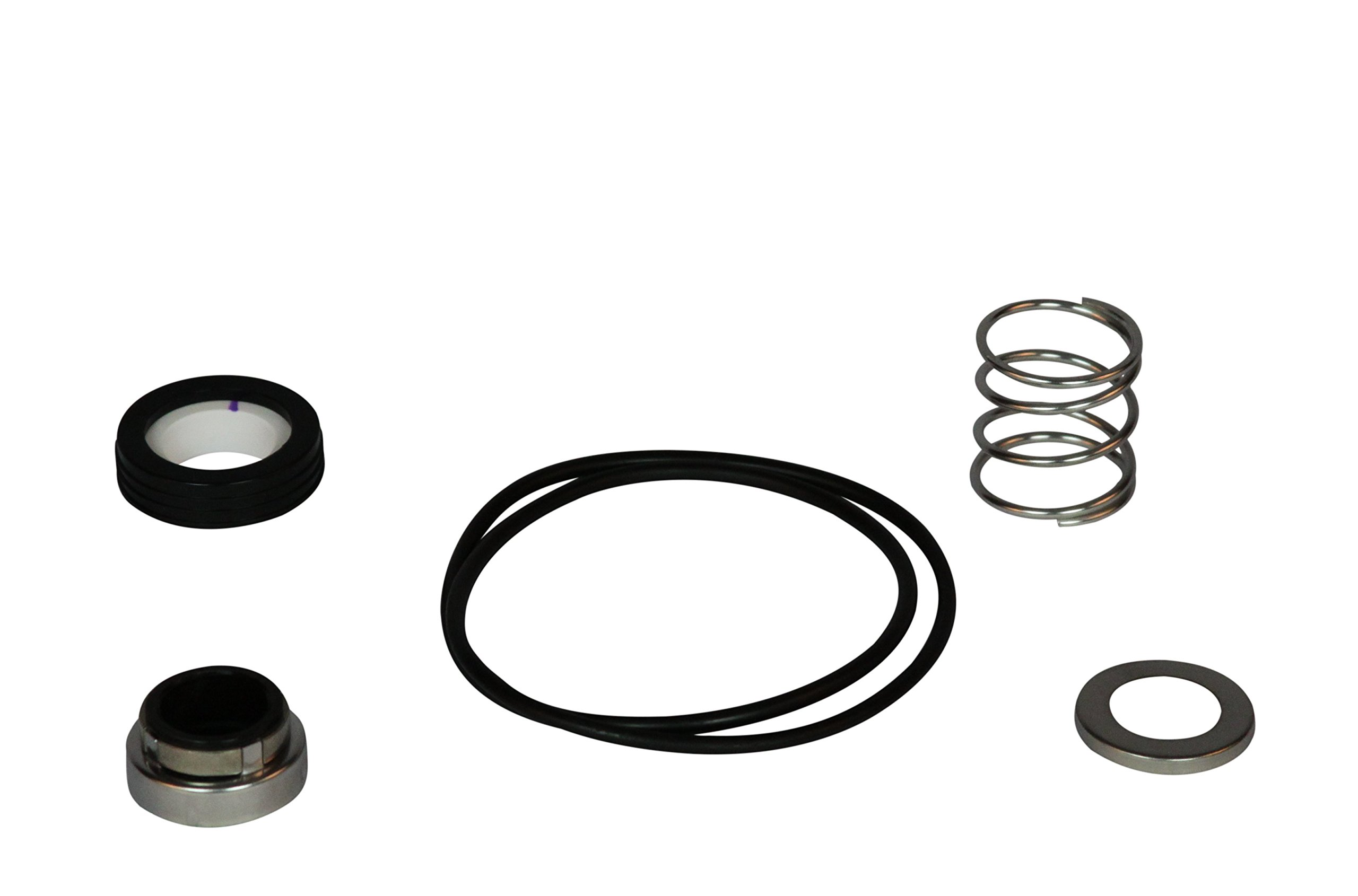 Wayne 64048-WYN1 Shaft Seal and Gasket for Pls, Black