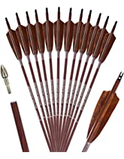 PANDARUS Archery 31-Inch Carbon Hunting Arrows, 4-Inch Turkey Feather Fletching with Replaceable Points, Targeting Practice Arrows Spine 500 for Recurve & Traditional Bows