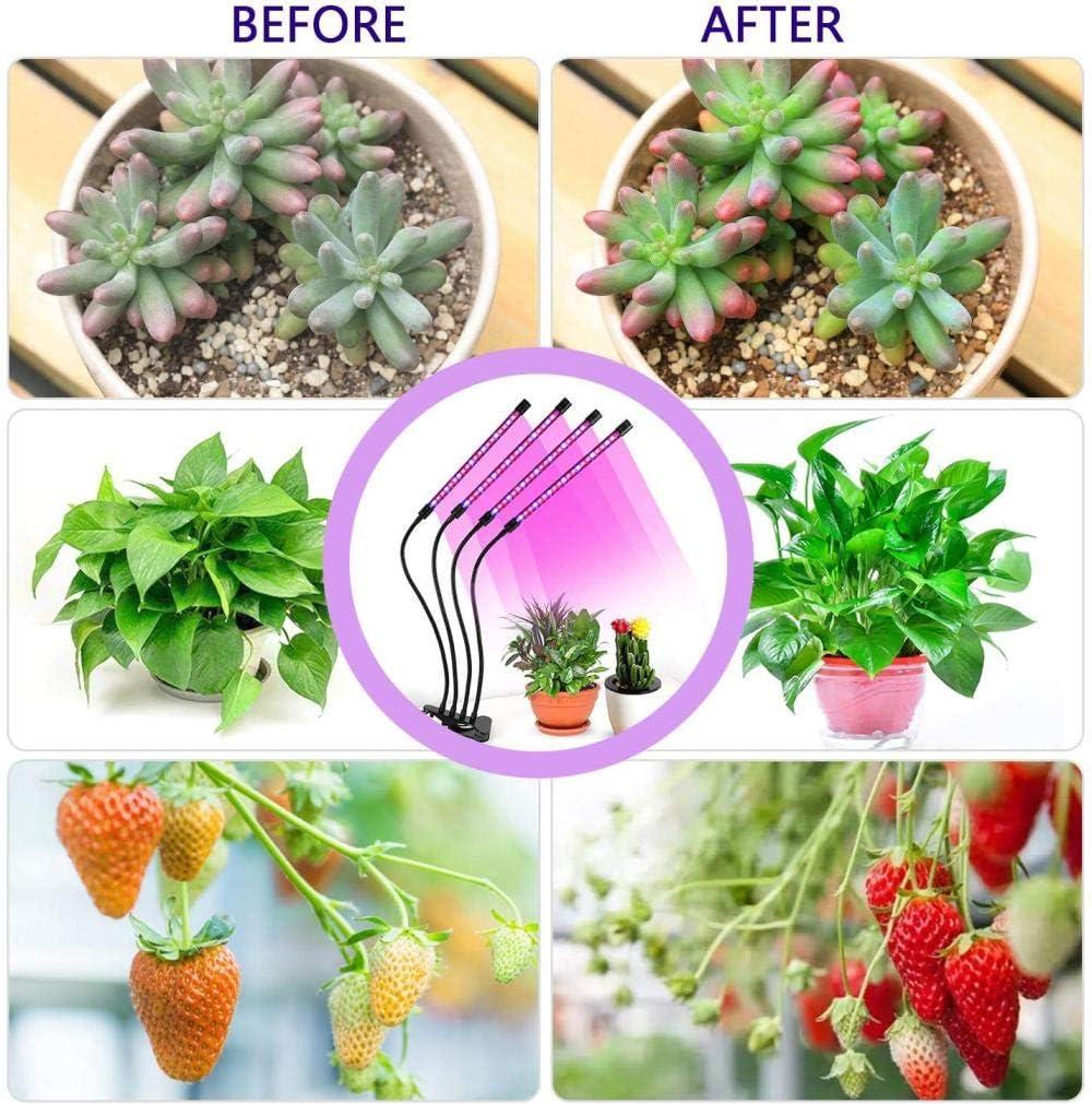 10 tipos de brillo CCDSR 3 tipos de modo L/ámpara LED para plantas 4 cabezas con 80 luces LED de crecimiento para plantas de interior con temporizador espectro completo 40 W