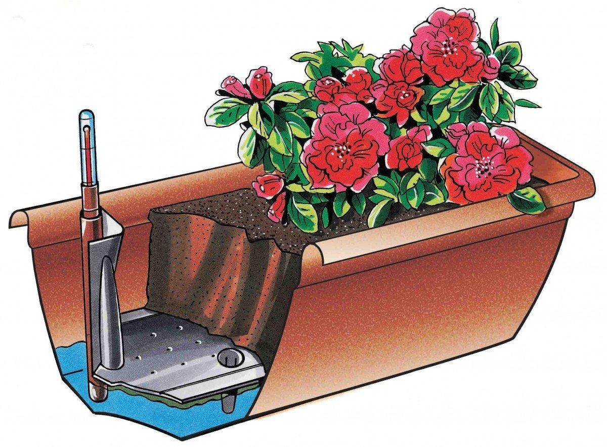 Wasserstandsanzeiger Farben:anthrazit 38;L/änge:60 cm Blumenkasten AQUA TOSCANA aus Kunststoff incl Bew/ässerung und Untersetzer