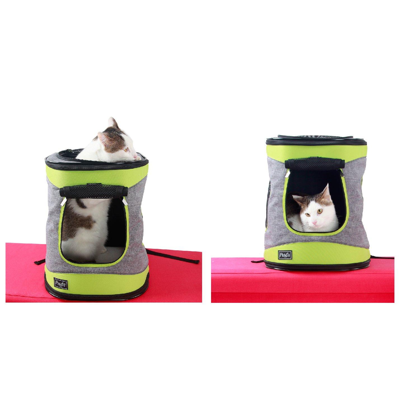 Die richtige Größe, sowie das Gewicht des Katzenrucksacks sollte entsprechend dem Tier angepasst werden.