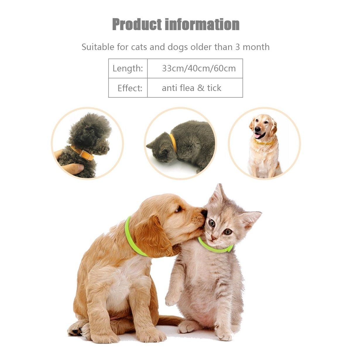 PETCUTE Collar Anti pulgas y garrapatas para Gatos y Perros, Collar Repelente de plagas con fórmula Natural para Perros y Cachorros Ajustable, ...
