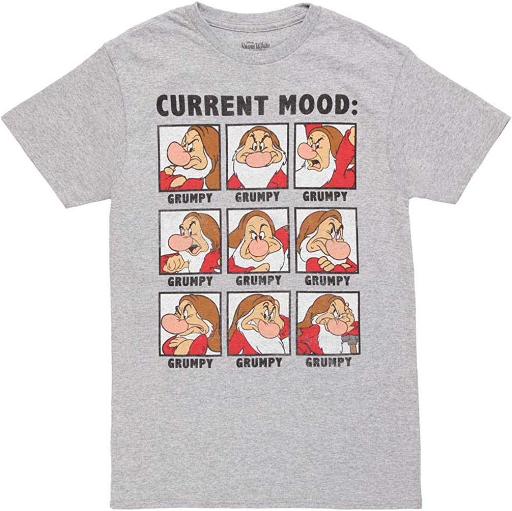 Fifth Sun Snow White and The Seven Dwarves Mens Grumpy T-Shirt