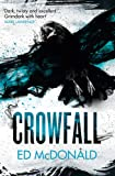 Crowfall: The Raven's Mark Book Three