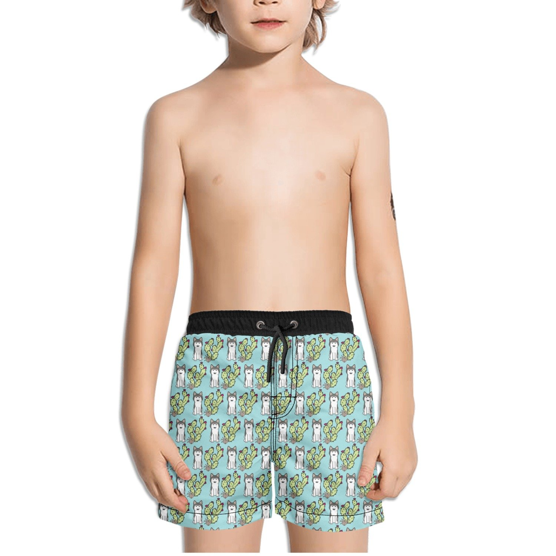 FullBo Cute Siberian Husky Dog and Cactus Little Boys Short Swim Trunks Quick Dry Beach Shorts