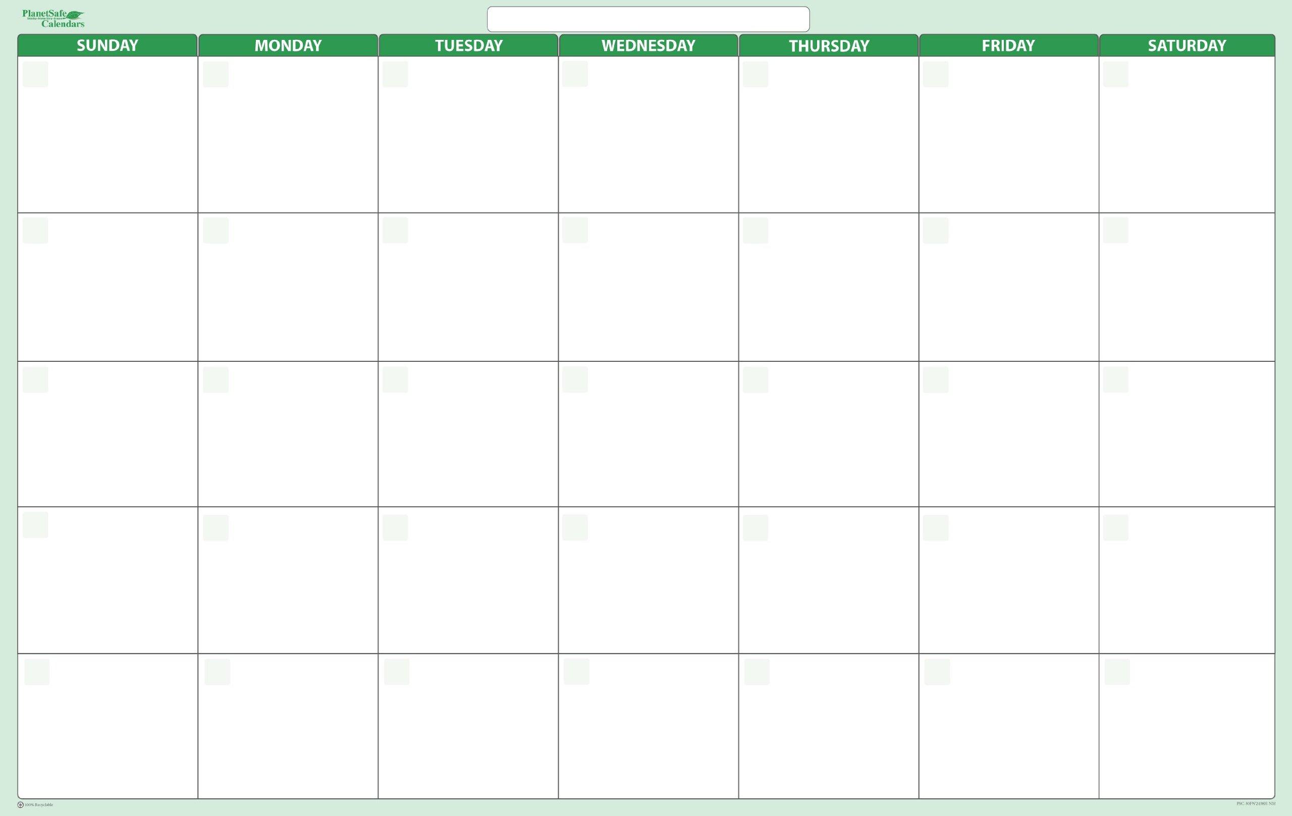 Earth Green 30-Day Dry-Wet Erasable Wall Calendar - Sunday-Saturday 24 x 36