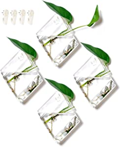 GeoTerrariums Diamond Terrariums Hanging Wall Planters