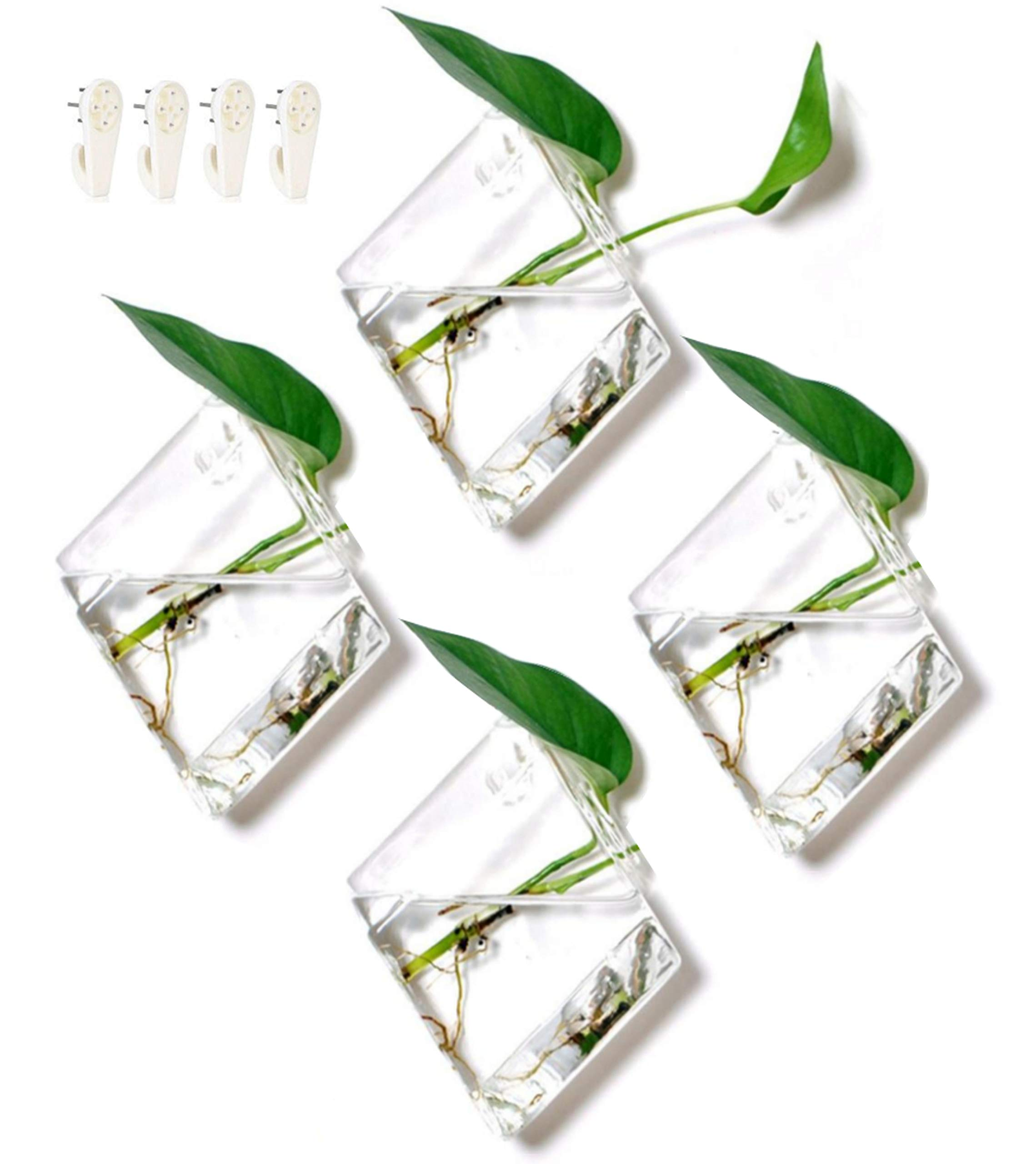 Set of 4 Glass Terrarium Hanging Wall Planters, Diamond Air Plants Succulent Container GeoTerrariums