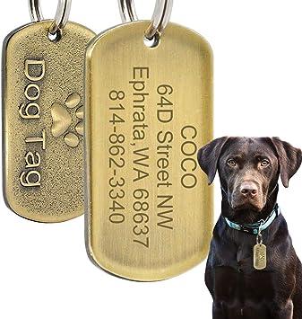 Beirui - Etiquetas de identificación para Mascotas, de Acero ...