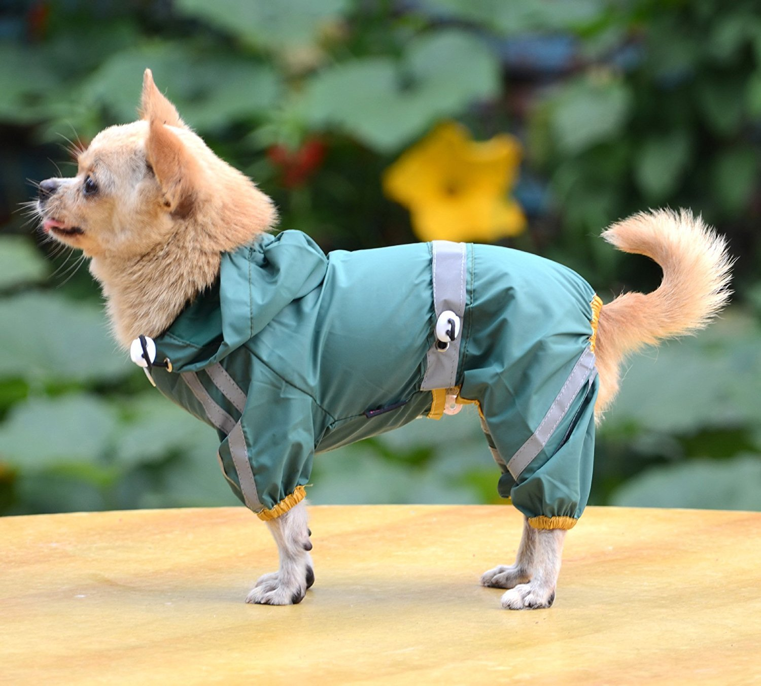 Green XS Green XS PAWZ Road Large Dog Raincoat Button Design Waterproof with Pocket and Adjustable Waist 3 colors 6 Sizes,Dog Costumes (color   Green, Size   XS)