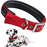 PETBABA(ペットババ) 首輪 犬, 犬用首輪 大型犬 中型犬 ドッグカラー ソフトコットン裏地 長さ調整可能 お散歩/トレーニングに便利 反射素材 金属バックル (L, レッド)