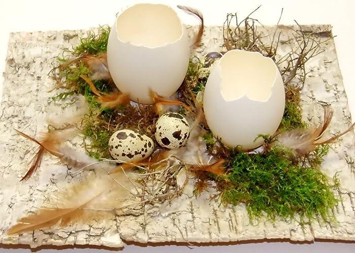 Oster Deko osterdekoration birke schlupfeier naturdeko osterdeko tischdeko