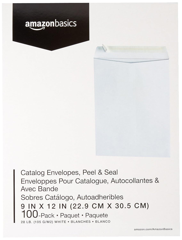 Basics Catalog Envelopes White Peel /& Seal 9 x 12 Inch 250-Pack