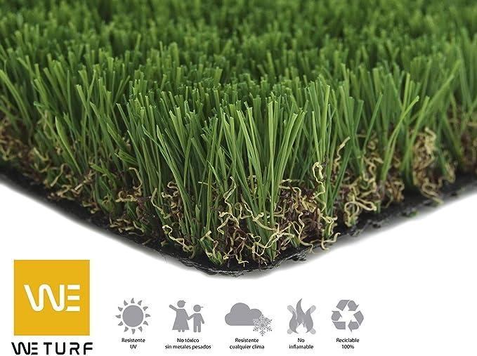WETURF Césped Artificial/Césped Sintético 40mm (2mx0, 5mx5m, Bicolor con rizo Beig): Amazon.es: Jardín