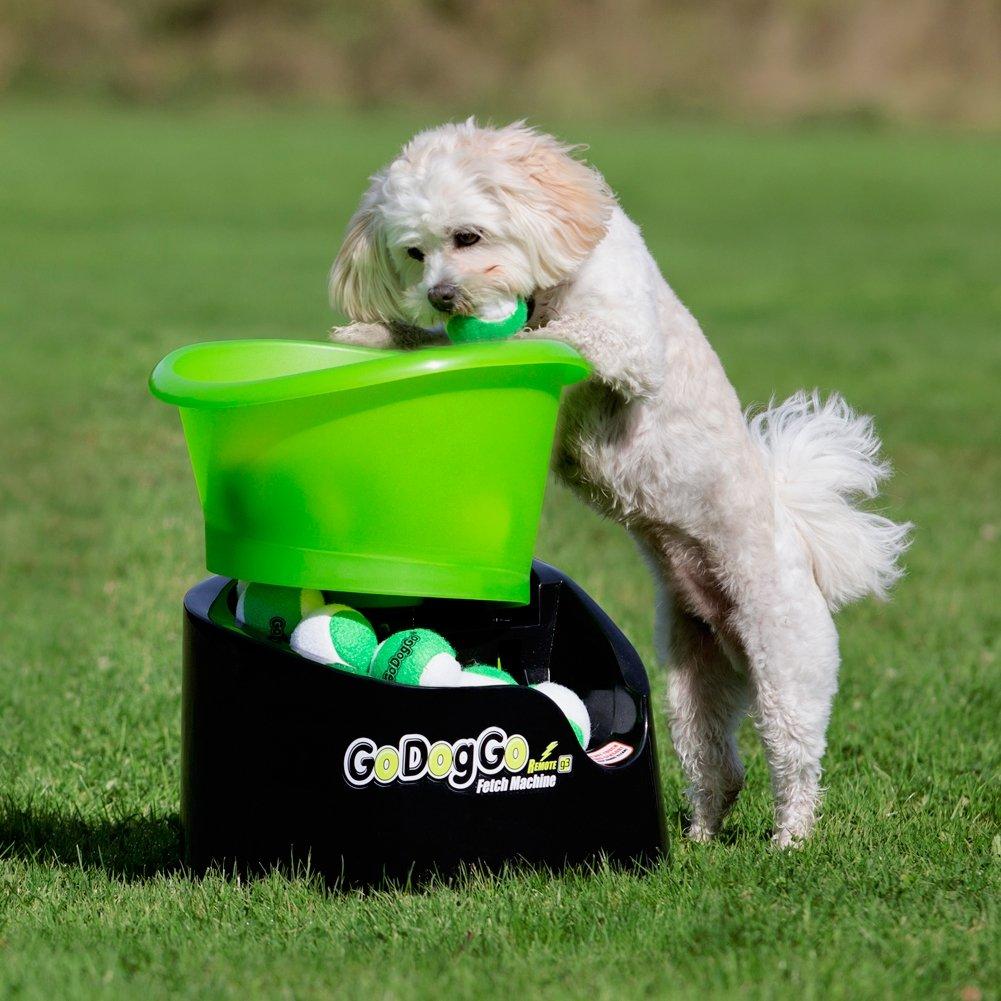 amazon com godoggo fetch machine for dogs g4 automatic ball
