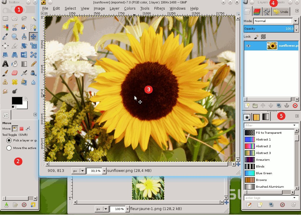 GIMP 2019 Photo Editor Premium Professional Image Editing Software for PC Windows 10 8.1 8 7 Vista XP, Mac OS X & Linux - Full Program & No Monthly Subscription! by PixelClassics