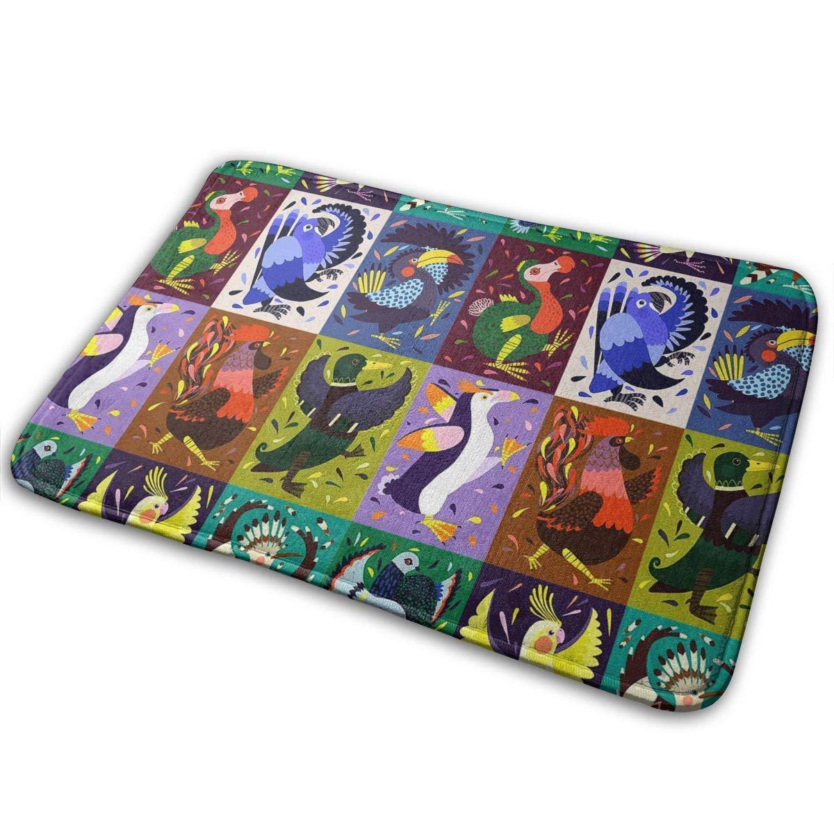 Uosliks Doormat Birds Retro Fashion Welcome Door Mats Dog Carpet Indoor Outdoor Shoe Sraper 19.7x31.5 inch