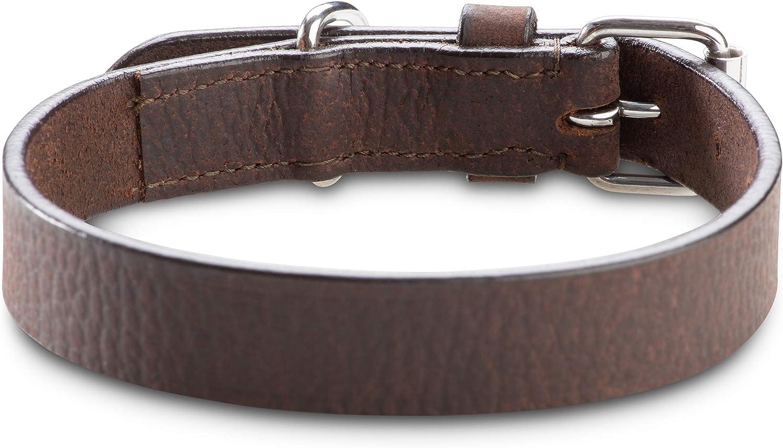 M Cuero de b/úfalo marr/ón Oscuro Jack /& Russell Collar de Perro de Cuero de Primera Calidad Hendrix Original Collar de Perro de Cuero con el Sello en Relieve