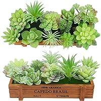 11 piezas de plantas suculentas artificiales, plantas suculentas