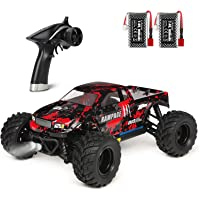 HBX 1:18 Scale All Terrain RC Car 36KM/H High Speed, 4WD Electric Vehicle,2.4 GHz Radio Controller, Included Battery and…