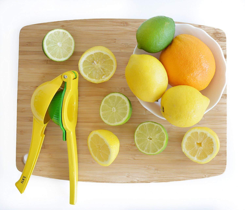 Manual Citrus Press Juicer Top Rated Invivo Premium Quality Metal Lemon Lime Squeezer