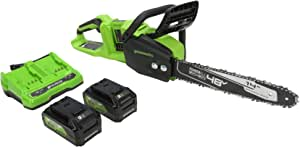 Greenworks 2 x 24V (48V) 14 in. Brushless Chainsaw, (2) 4Ah USB (Power Bank) Batteries and Dual Port Charger, CS48L4410