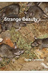 Strange Beauty Paperback