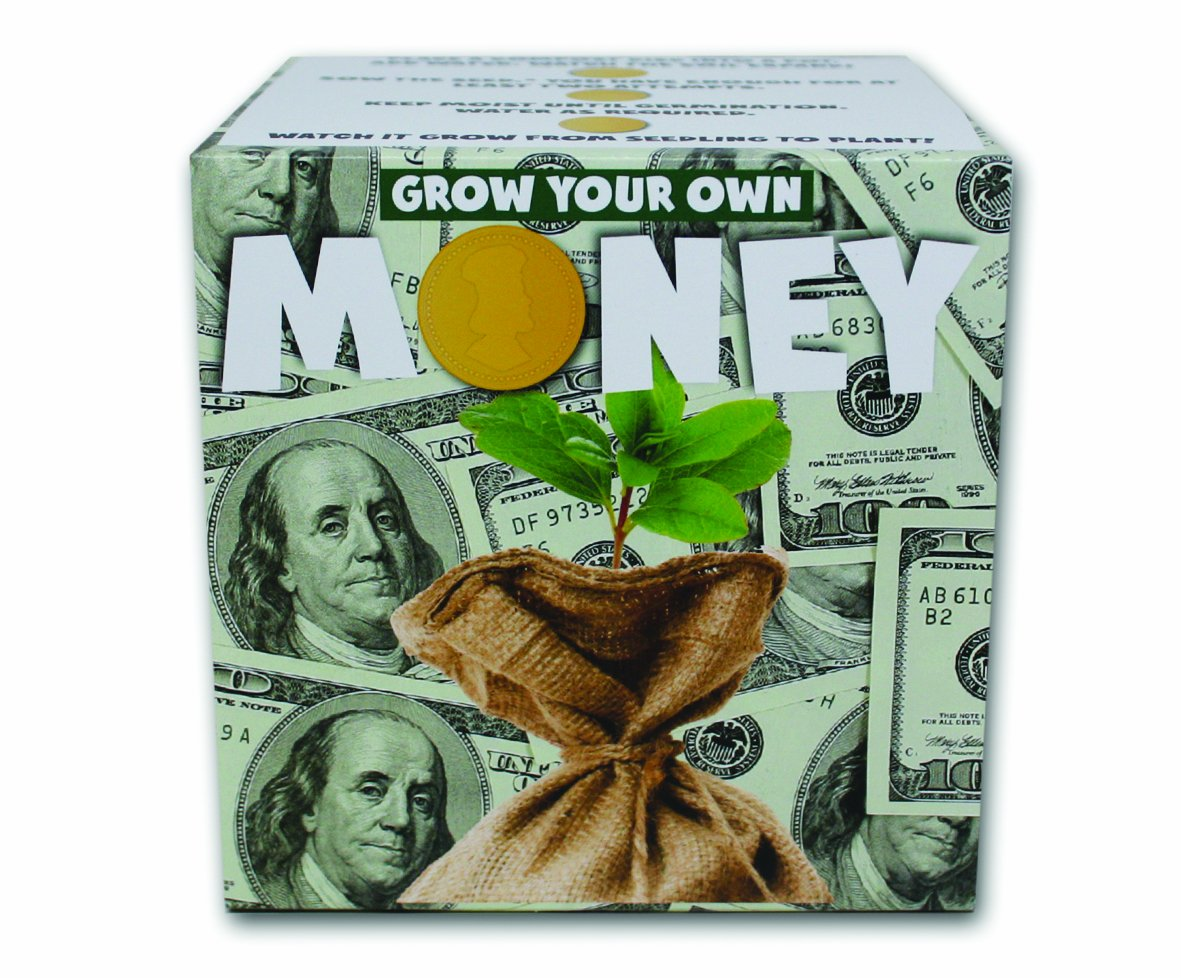 Gift Republic GR330020 Grow Your Own Money Pflanzset