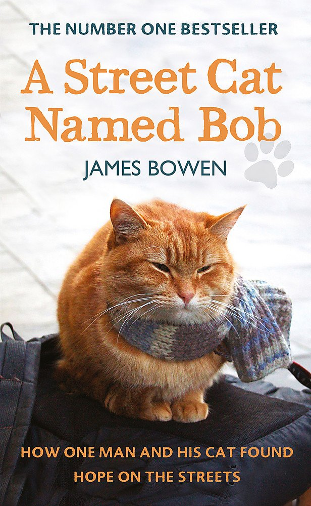 A Street Cat Named Bob How One Man And His Cat Found Hope On The Streets Bowen James 8601200572414 Amazon Com Books