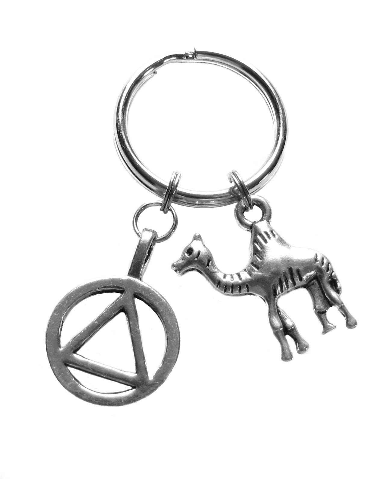 Heart Projects Alcoholics Anonymous AA Unity Symbol and Camel Charms 12 Step Anniversary Recovery Gift