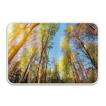 Forest With Sunshine Non-Slip Floor Outdoor Indoor Front Door Mat bathroom