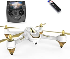 HUBSAN H501SS X4 FPV Drone GPS 5.8GHz Transmitter 1080P HD Camera Brushless Motor Quadcopter (White)