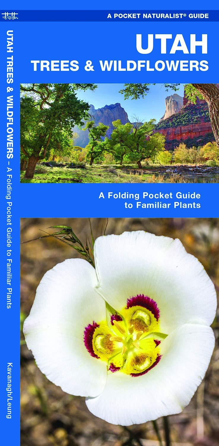 Utah Trees & Wildflowers: A Folding Pocket Guide to Familiar Plants (Pocket  Naturalist Guides): James Kavanagh, Waterford Press, Raymond Leung: ...