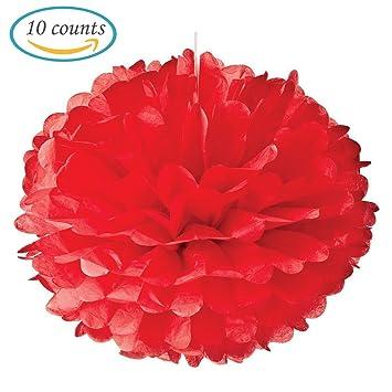 Amazon hmxpls 10pcs red tissue hanging paper pom poms flower hmxpls 10pcs red tissue hanging paper pom poms flower ball wedding party outdoor decoration mightylinksfo