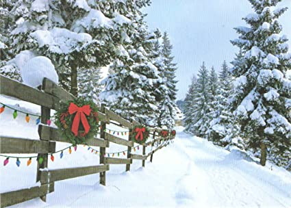 Amazon classic christmas card 9 pack forest lane warmth of classic christmas card 9 pack forest lane warmth of family 5quot x m4hsunfo