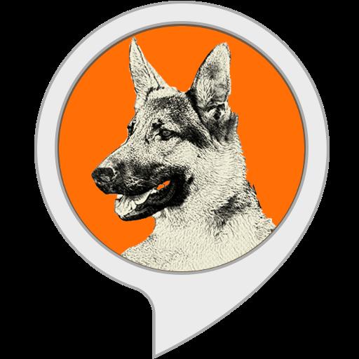 Perro Guardián